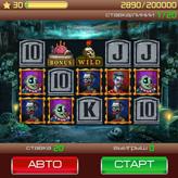 Скриншот к игре Игровые автоматы - Слоты
